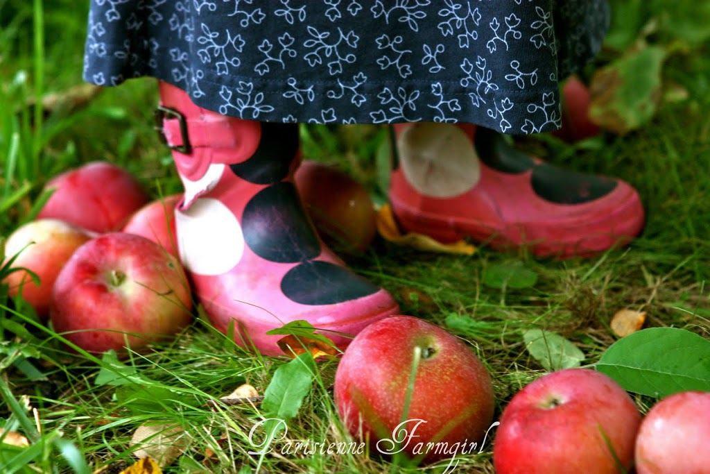 A Family Morning of Apples and More