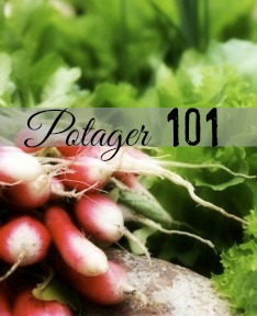 Potager 101 – Classe 4, On Seed Selection and Starters