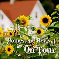 Homestead Revival Interview!